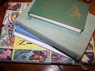 Blogbirdbooks 002